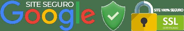 segurança google